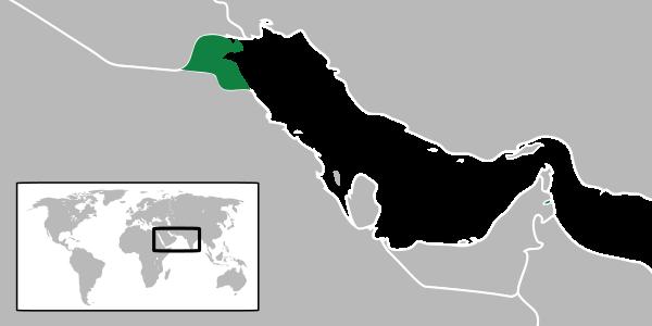 Кувейт.png