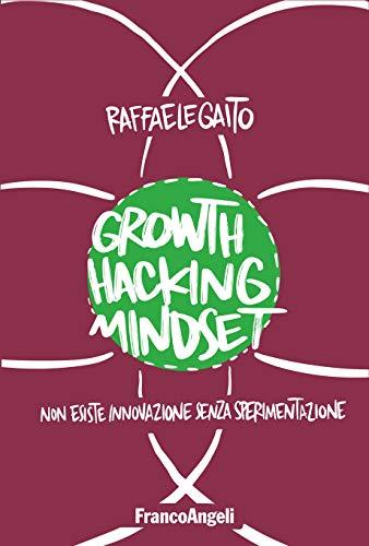 Growth Hacking Mindset.jpg