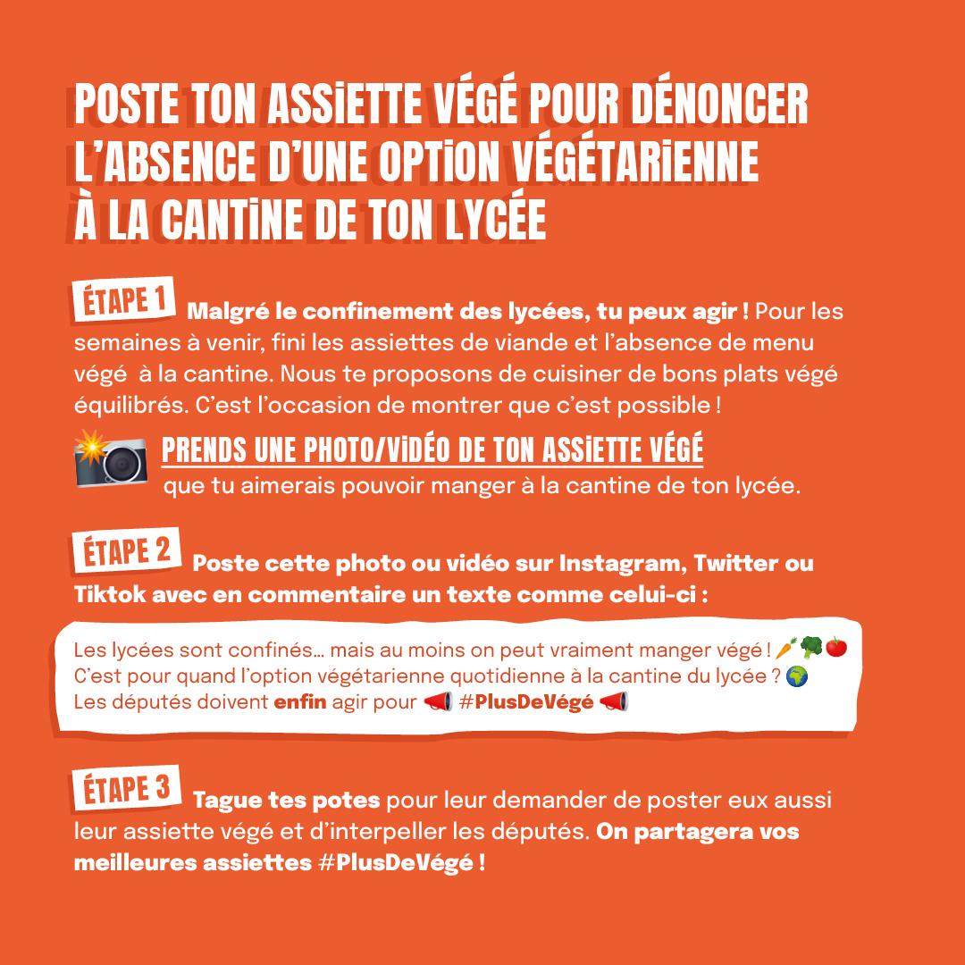flyer-IG3.jpg